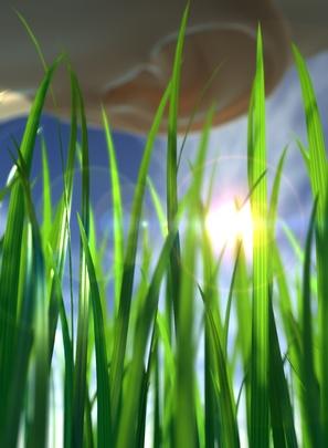 Ohr lauscht am Gras